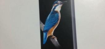 Rò rỉ hình ảnh vỏ hộp của Bphone 2 sắp ra mắt