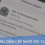 Hướng dẫn cách cập nhật iOS 12 beta cho iPhone, iPad