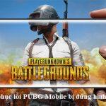Cách khắc phục lỗi PUBG Mobile bị đứng hình trên iPhone