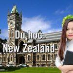 10+ Kinh nghiệm du học New Zealand hữu ích bạn cần biết