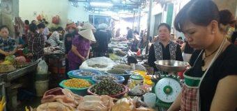 Bỏ túi 5 Chợ Hải Sản Đà Nẵng tươi sống giá rẻ ngon nhất