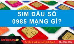 sim-thang-long-dau-so-0985